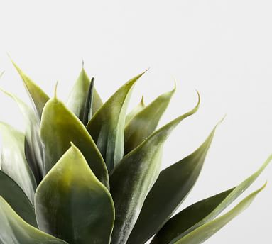 "Faux Potted Aloe Vera Plant, 14""H"