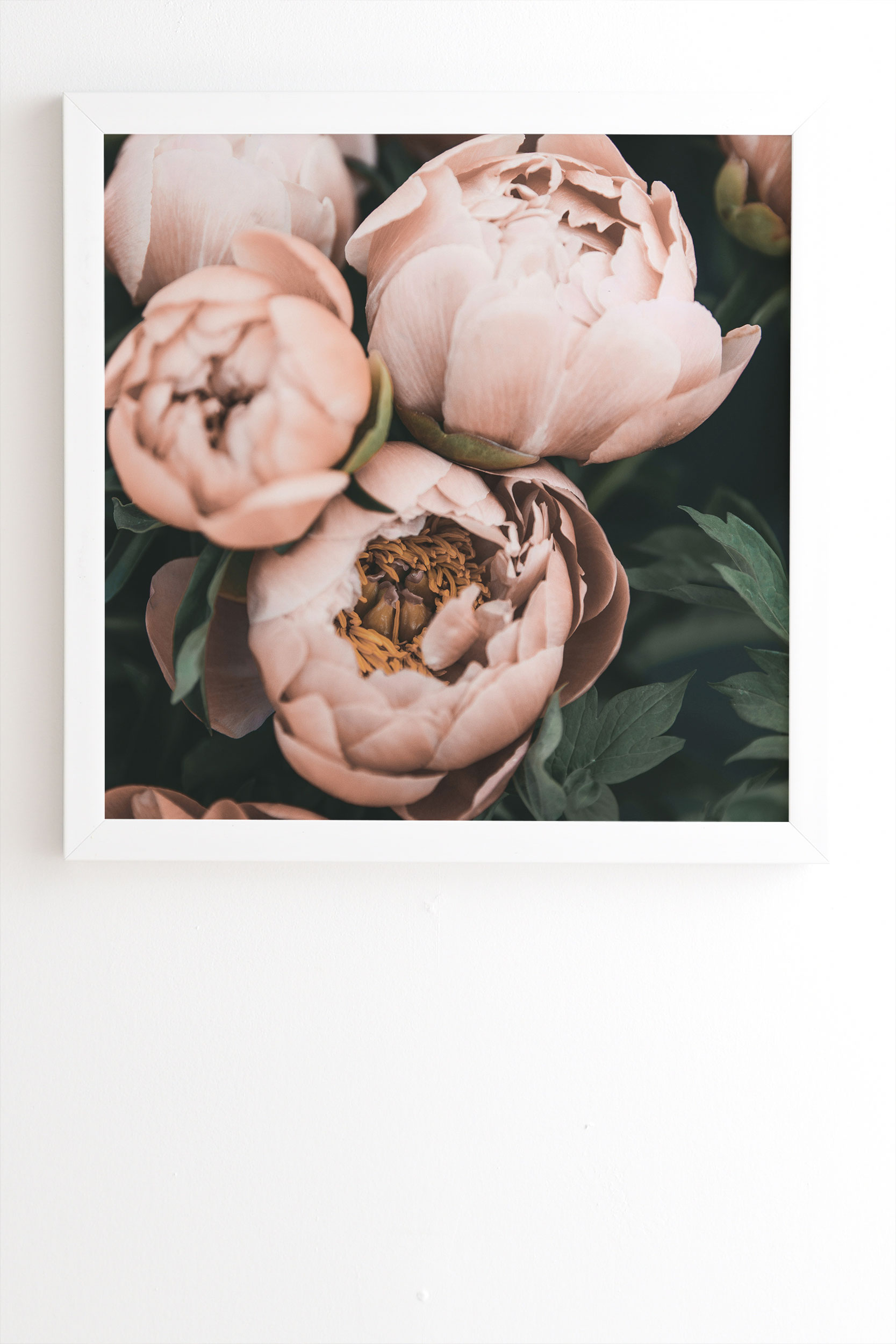 """Pastel Peony by Sisi and Seb - Framed Wall Art Basic White 20"""" x 20"""""""
