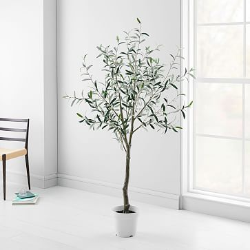 Artificial Plants, Olive Tree
