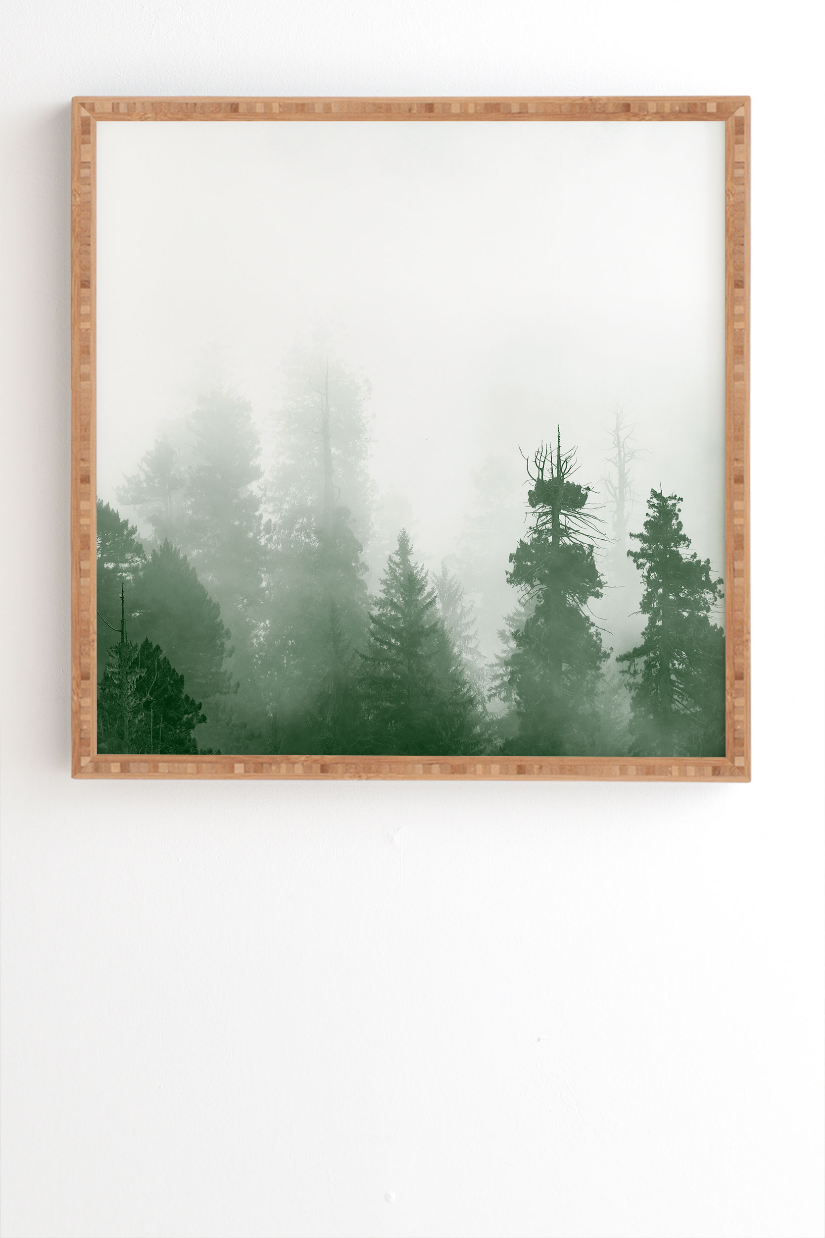 """Green Forest Adventure by Nature Magick - Framed Wall Art Bamboo 30"""" x 30"""""""
