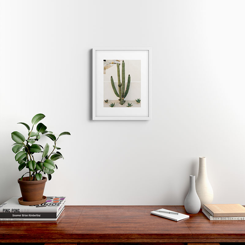 """Cabo Cactus X by Bethany Young Photography - Modern Framed Art Print, White, 16"""" x 20"""""""