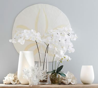Frosted Glass Hurricane, White, Large