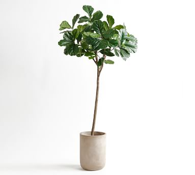 Faux Potted Fiddle Leaf Fig Tree - 7'