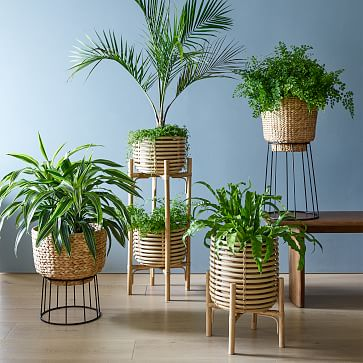 Hilo Basket Planter, Medium